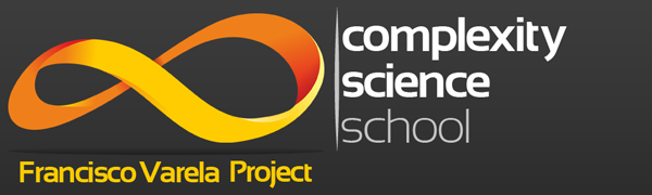 Complexity Science School