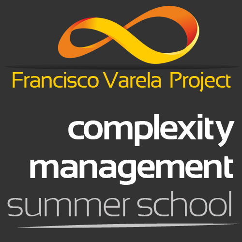 Complexity Management Summer School 2014