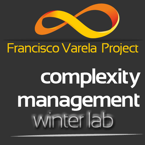 Complexity Management Winter Lab 2015